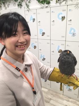 yamamoto_20190526_02.jpeg